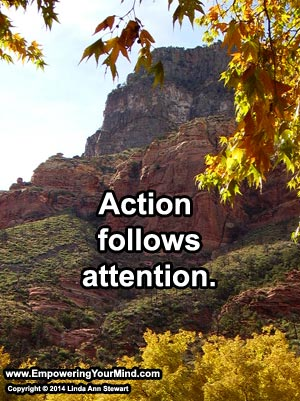 Action Follows Attention