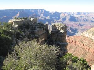 Grand Canyon-Moran Pt.